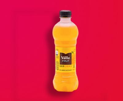 Suco garrafa (450ml)